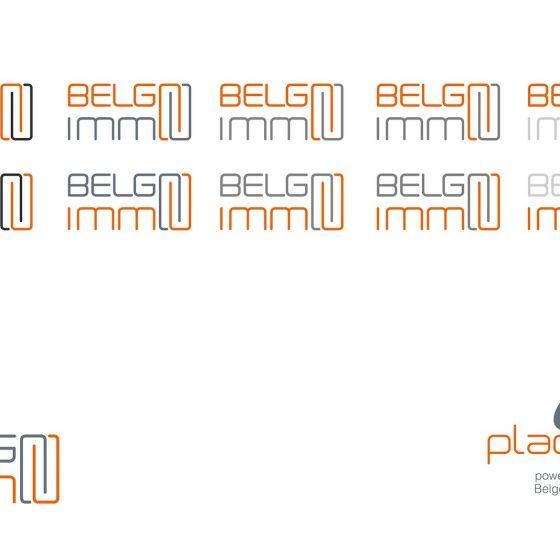 Belgo Immo logo
